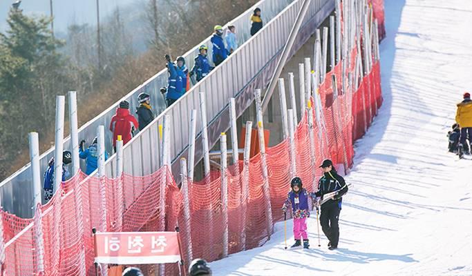 Ski/snowboard Lesson: Elysian Gangchon Ski Resort (Lesson Only)