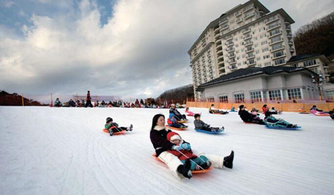 1 Day Ski/Snowboard Lesson/Snow Sled/Free Time Tour: Elysian Gangchon Ski Resort