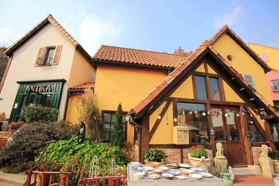 Seoul Vicinity: Nami Island + Petite France + Garden of Morning Calm Day Tour