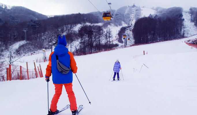 1 Day Ski/Snowboard/Snow Sled Tour: Phoenix Park Ski Resort